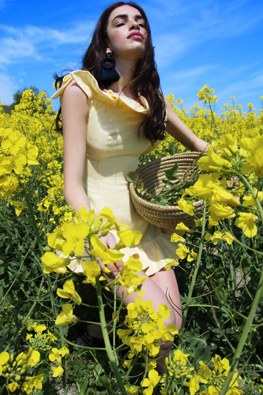 Picture of Marigold Dress